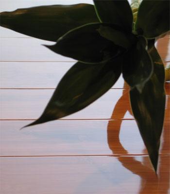 Bamboo Floor Gallery